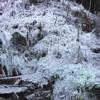 冬はあしがくぼへ氷柱を見に行こう。冬の秩父は熱い!