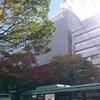 野村不動産仙台青葉通りビル、建築状況(2016年11月)