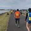 新潟シティマラソン2017完走しました