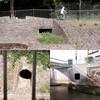 善福寺川の開口部から暗渠を探す(追記あり)
