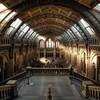 【放送大学のコト】オンライン授業「博物館で学ぶ文化人類学の基礎('20)」は楽しそう!