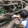 【町田リス園】乳幼児も小学生もむしろ大人も大満足!どんなところ??