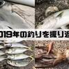 【熊本天草】2019年を釣りで振り返る!エギング三昧な一年でした!