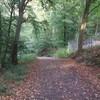 裏山のジョギングコース