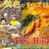"""【甘湯新湯】この世の""""黄色""""が全て詰まった極彩色の温泉@栃木県・塩原"""