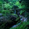 愛知の秘境といわれる乳岩峽の新緑