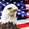 【USA360】楽天・米国レバレッジバランスは長期運用で高いリターンを出せるか【米国特化】