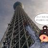 カレンダー 1月(東京スカイツリー)
