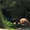 理想のキャンプ場