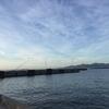 愛知県在住の釣り人が見るべき釣り情報サイトのオススメ6選
