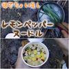 カップヌードルしお+レモングラス