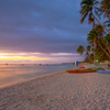 フィリピン旅行、どこ行く??