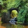 自然を巡る(農溝の滝 粟又の滝)