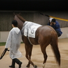 競馬の記憶、ある詩人の回想する第1回日本ダービーのこと