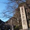 新春、高尾山を登る
