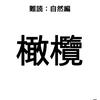 【難読漢字:植物編】橄欖、コレ読める??