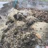 堆肥作りも楽しいですよ?
