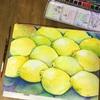 蒸し暑い!そうだレモンだ!水彩で描いてしまおう!