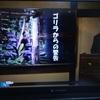 山極先生の「ゴリラからの警告」を視聴する。