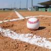 今年もまた野球のシーズンが始まる