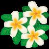 【節約ハワイ旅の準備④】持ち物お悩みアラフィフ女子がいつもの旅に買い足したもの・・・のお話。