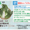 グリーンコープの野菜セット