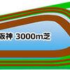 阪神大賞典2020