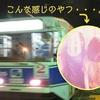 活イカ食べに!函館・大沼の旅③ 活イカげっと!!