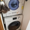 【レビュー】無印良品のドラム式洗濯機(MJ‐DW1)と電気式衣類乾燥機(NH-D502P)を使ってみて