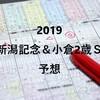 【競馬】2019新潟記念&小倉2歳S予想