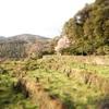 北川村の風景。柏木