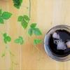 水出しコーヒーリベンジ!特徴を知り、僕が学んだこと