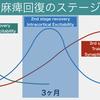 サクッと紹介! 運動麻痺回復のステージ理論:③ Intracortical Excitability(2nd stage recovery)