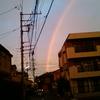 虹を見た!