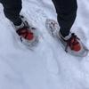 新年2日目のトレーニングは高山城山公園遊歩道でスノーシューラン
