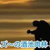 ぽんズ〜の酒池肉林!!