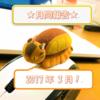 【月間報告】2017年3月のPV報告!!