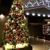 宿泊:東京マリオットホテル Nov.12,2017 プラチナチャレンジ2泊目