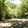 川を歩く。自然と共に喜び合うこと。