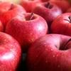 りんごでプチファスティング!3日で2kg戻りました