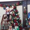 東京ディズニーランドのクリスマス 2017