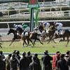 【北九州記念 2019 予想】過去のレース傾向分析&各馬評価まとめ /  18頭立てで混戦オッズだからこそ◎