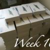 【Week 10】ブログの毎日更新もついに10週おわったよ。