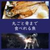 栄養満点「骨まで食べれる魚」おすすめ取り寄せ通販/宇宙食にも?!
