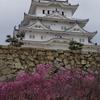 姫路城さくら弾丸バスツアー(その1)