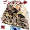 キャンプの焚き火に最適な薪の種類の選び方