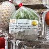 梅雨-第35号 沖縄 旅日記③