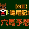 【GⅢ】鳴尾記念 結果
