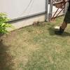 【エコ】家庭菜園のスペースを増設!