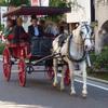 閑歩:馬車道まつりで馬車と人力車に乗ってきました(^_^)